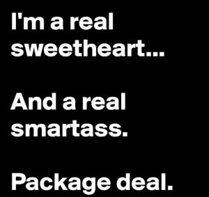 901806dfb6488ef673ba3a8e7a11a253--package-deal-too-funny